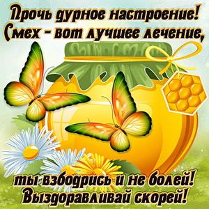 Картинка выздоравливай скорей с мёдом и бабочками