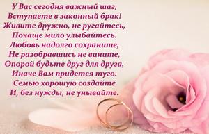 Пожелание и красивая роза на свадьбу