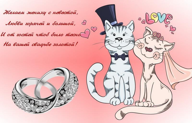Открытка, желаем жениху с невестой, кот, кошечка