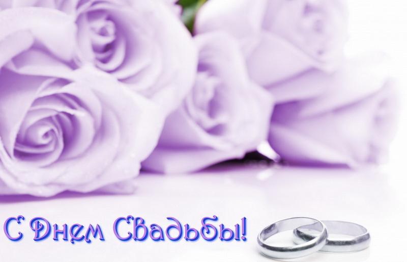 Открытка на свадьбу, фиолетовые розы
