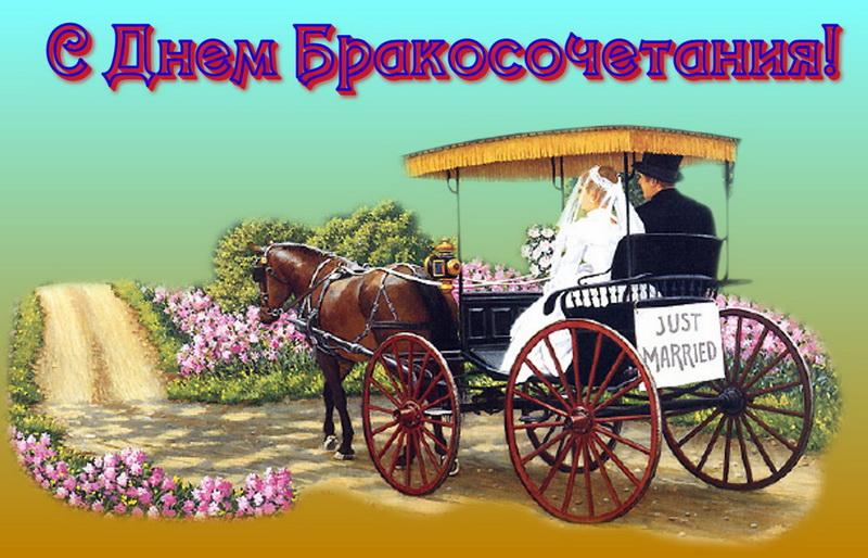 С днем бракосочетания, лошадь, карета