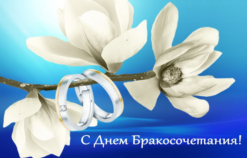 С днем бракосочетания, кольца на цветке