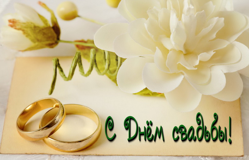 открытка - большой белый цветок и кольца на свадьбу