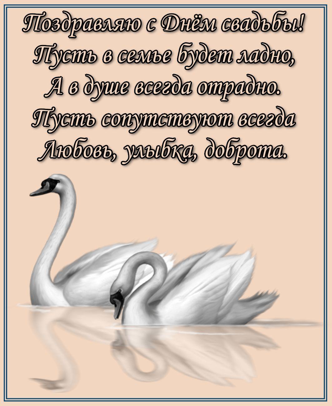 открытка - лебеди и поздравление с Днем свадьбы