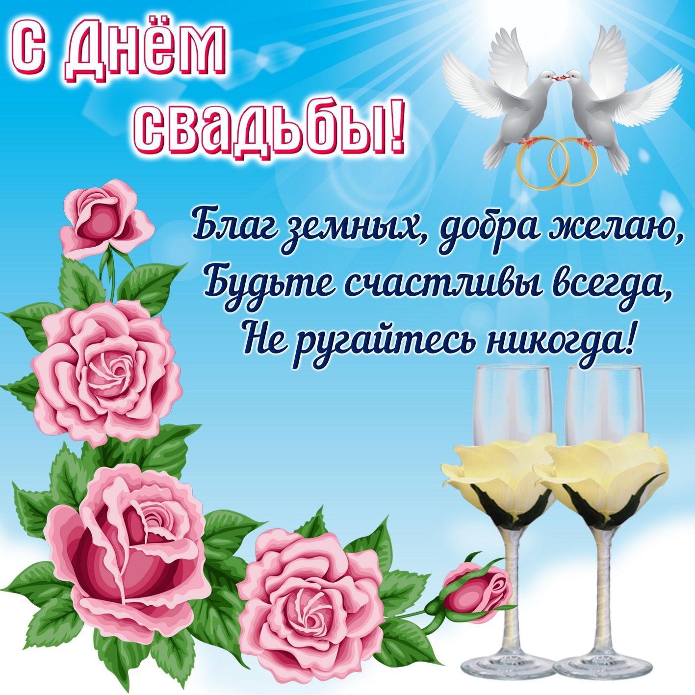 открытка на День свадьбы - два голубя с кольцами и розы