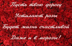 Пусть твою дорогу устилают розы