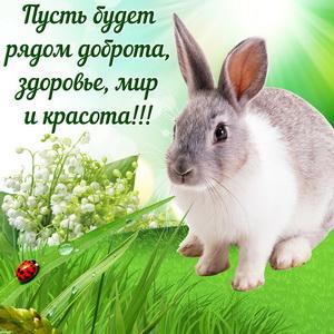 Открытка с милым кроликом на травке