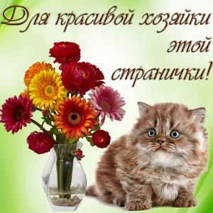 Красивый котик и букет цветов