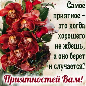 Открытка с пожеланием приятностей и цветами