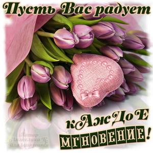 Милое пожелание и розовые тюльпаны с сердечком