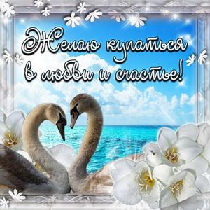 Картинка с лебедями и пожеланием любви и счастья