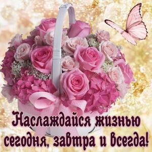 Картинка с красивым букетом цветочков и бабочкой