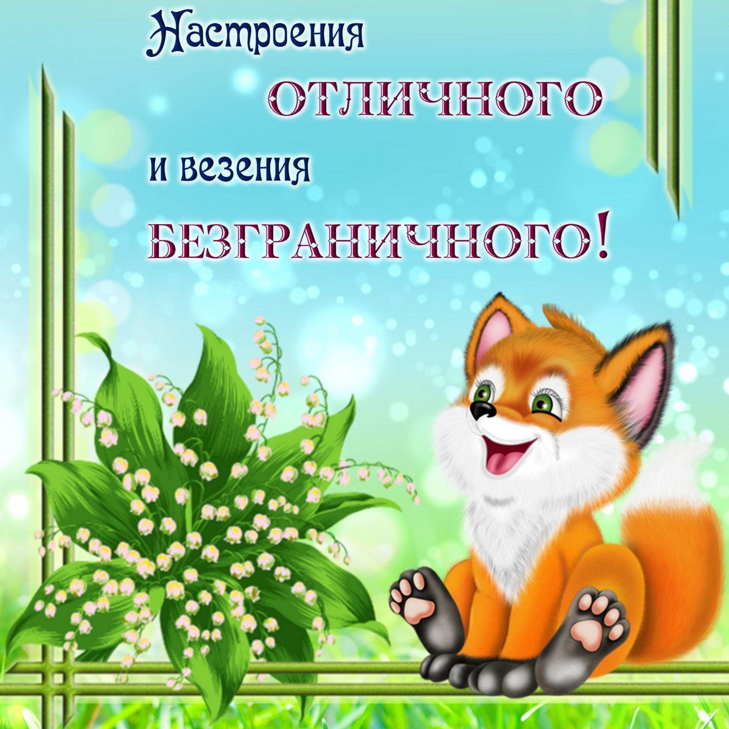 Открытка с пожеланием - весёлый лисёнок на красивом фоне