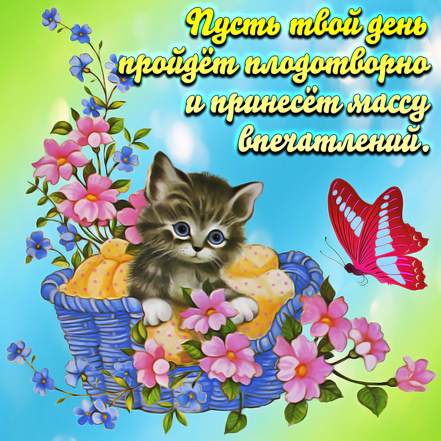 Картинка с котёнком среди цветочков и пожеланием