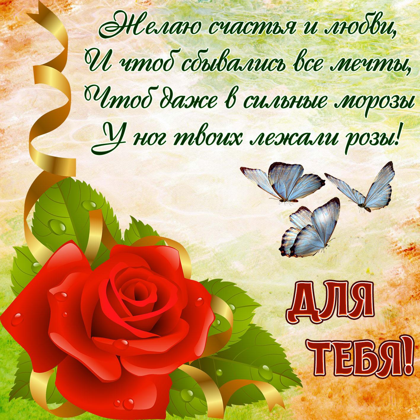 Открытка - пожелание на фоне красивой красной розы