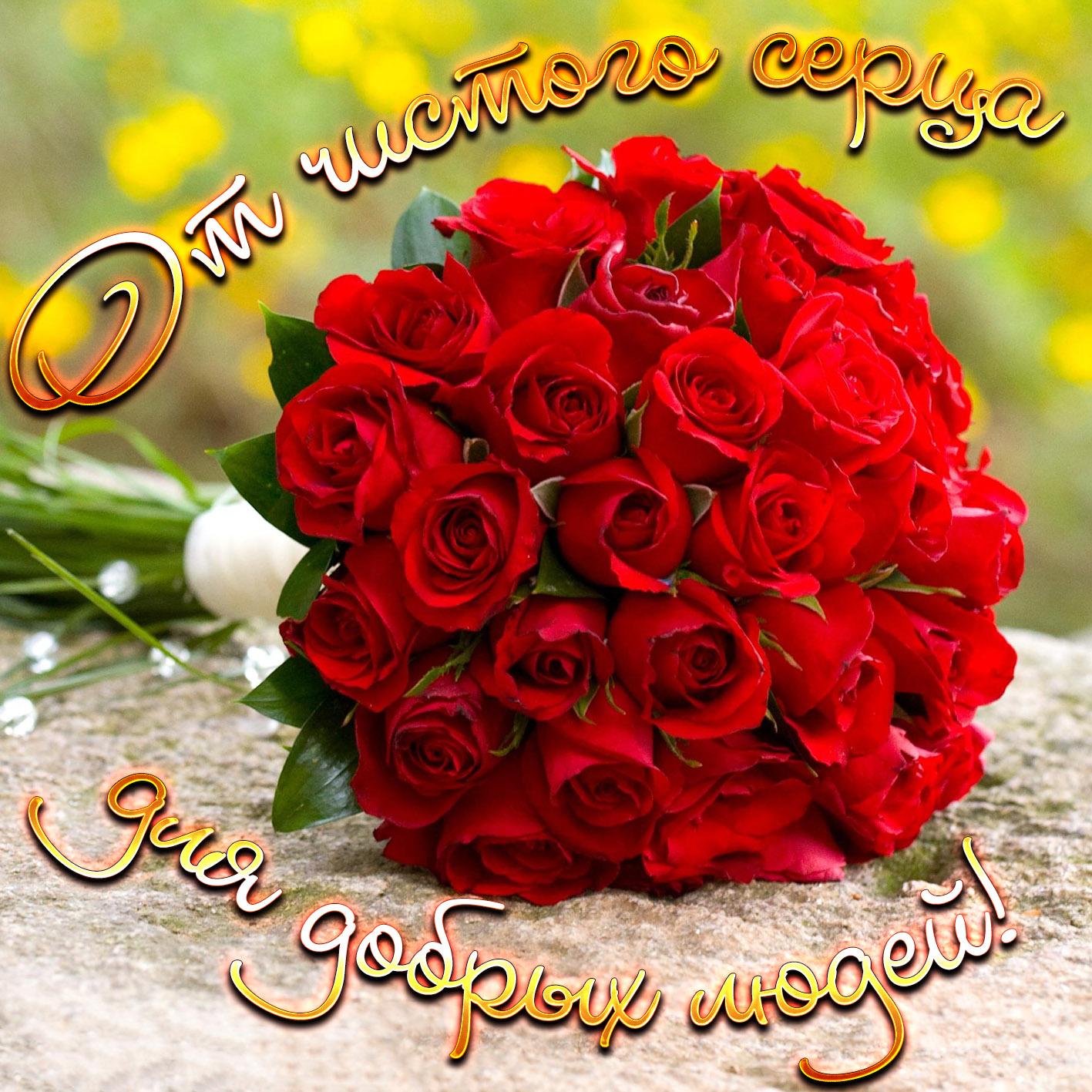 Яркая картинка с огромным букетом роз