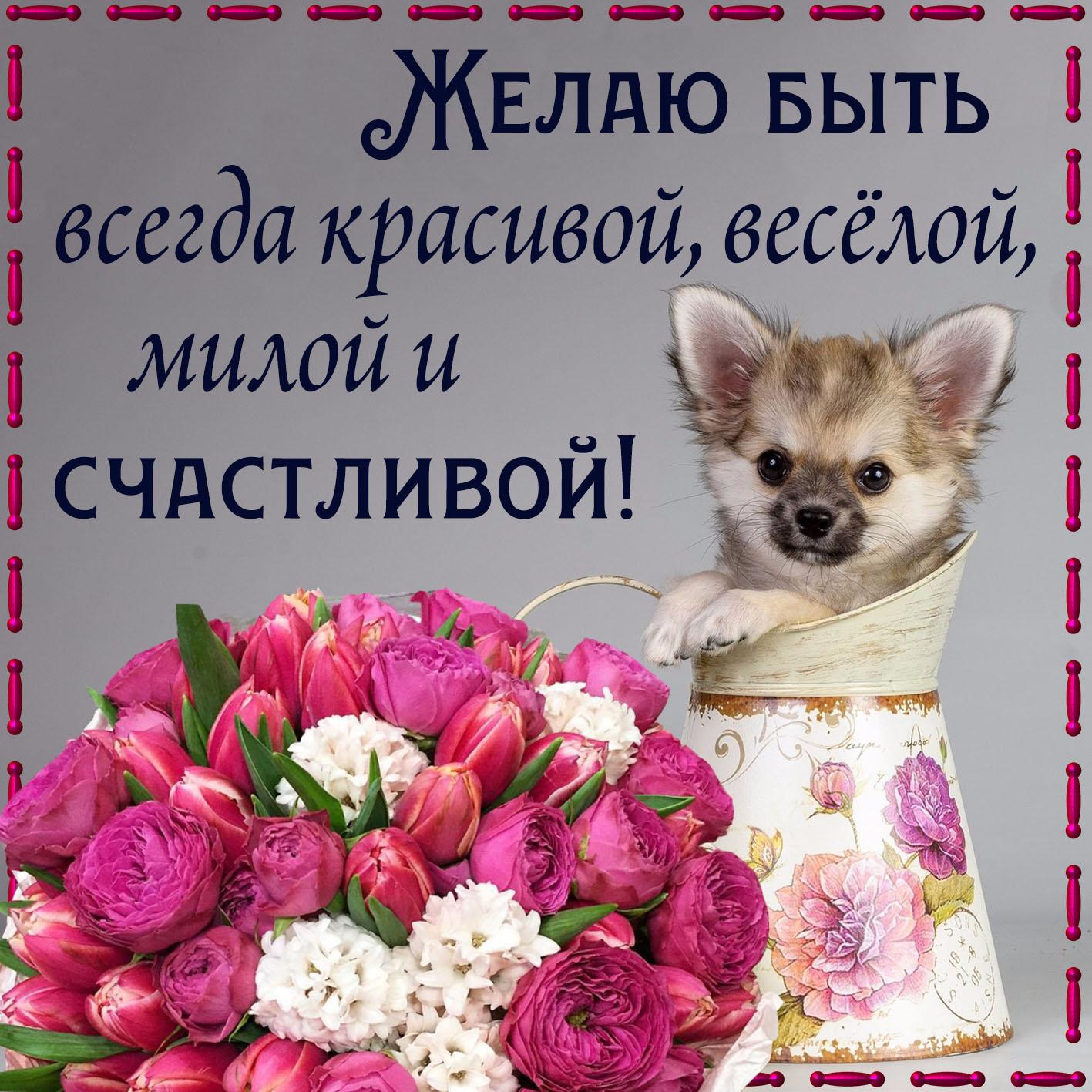 Картинка с собачкой, розами и пожеланием
