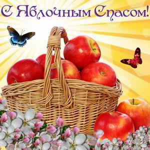 Корзина с яблоками на ярком фоне