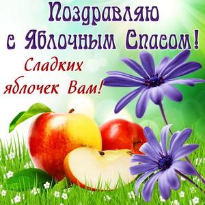 Яблоки и цветы на травке