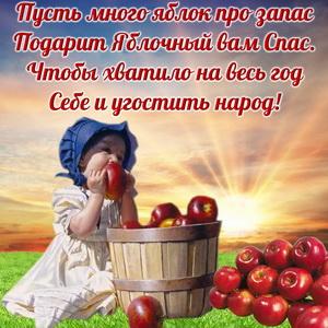 Маленькая девочка с яблочками