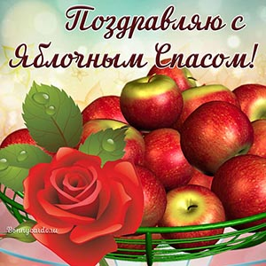 Открытка с яблоками и розой на Яблочный Спас