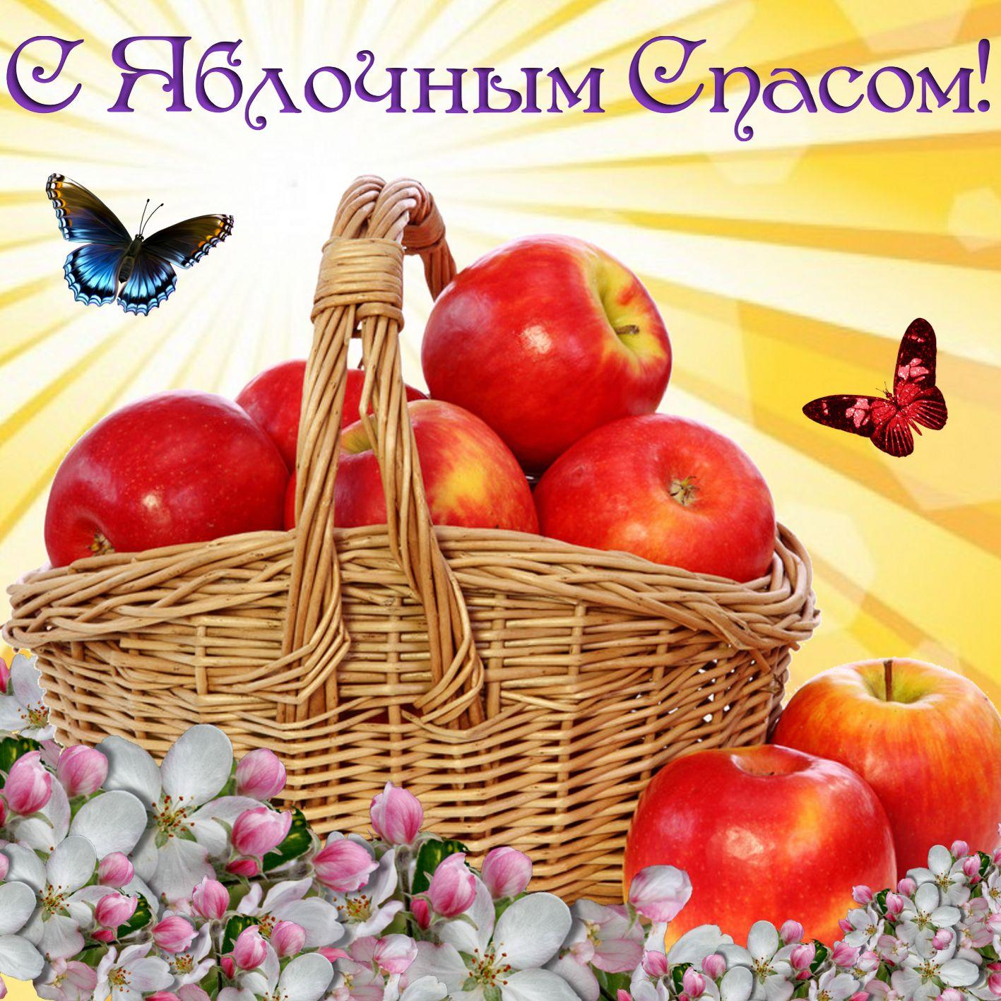 Открытка на Яблочный Спас - корзина с яблоками на ярком фоне