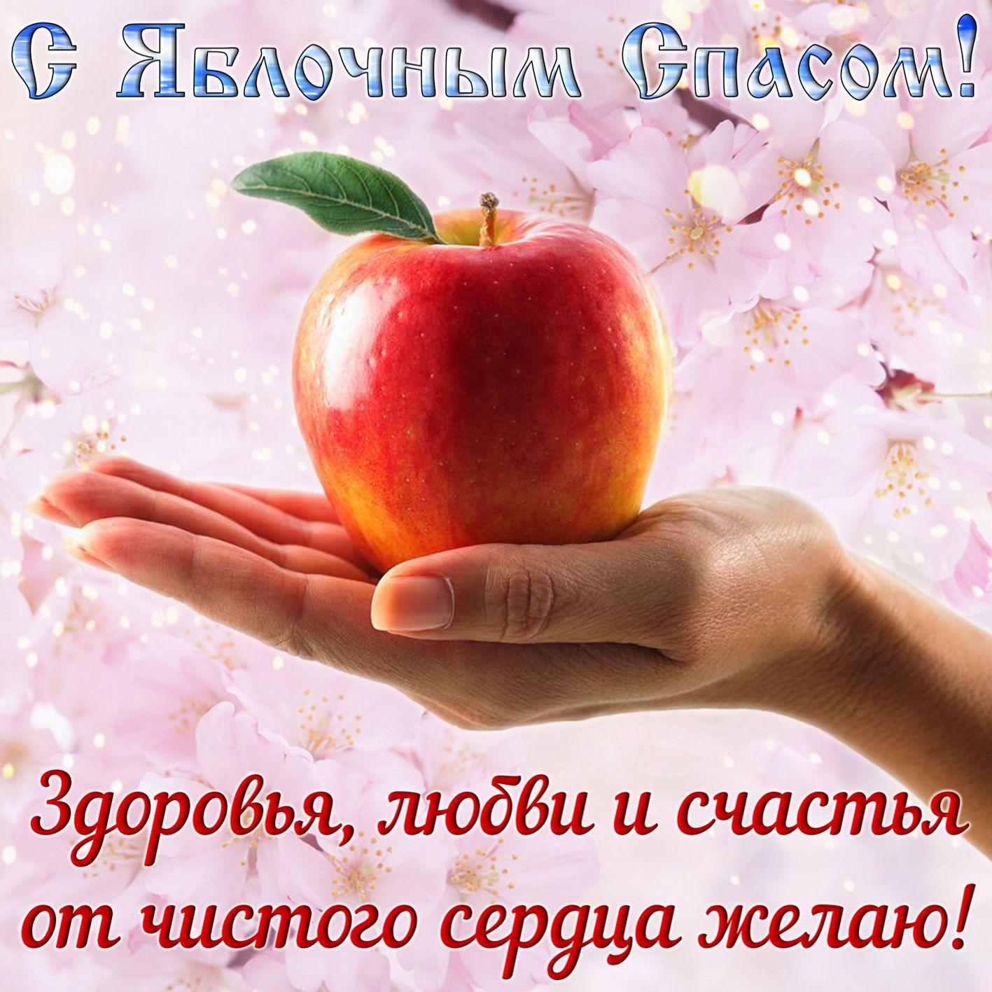 Открытка на Яблочный Спас - сочное яблоко на ладони