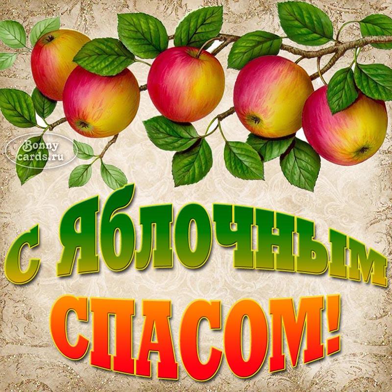 Красивая картинка с Яблочным Спасом с яблоками
