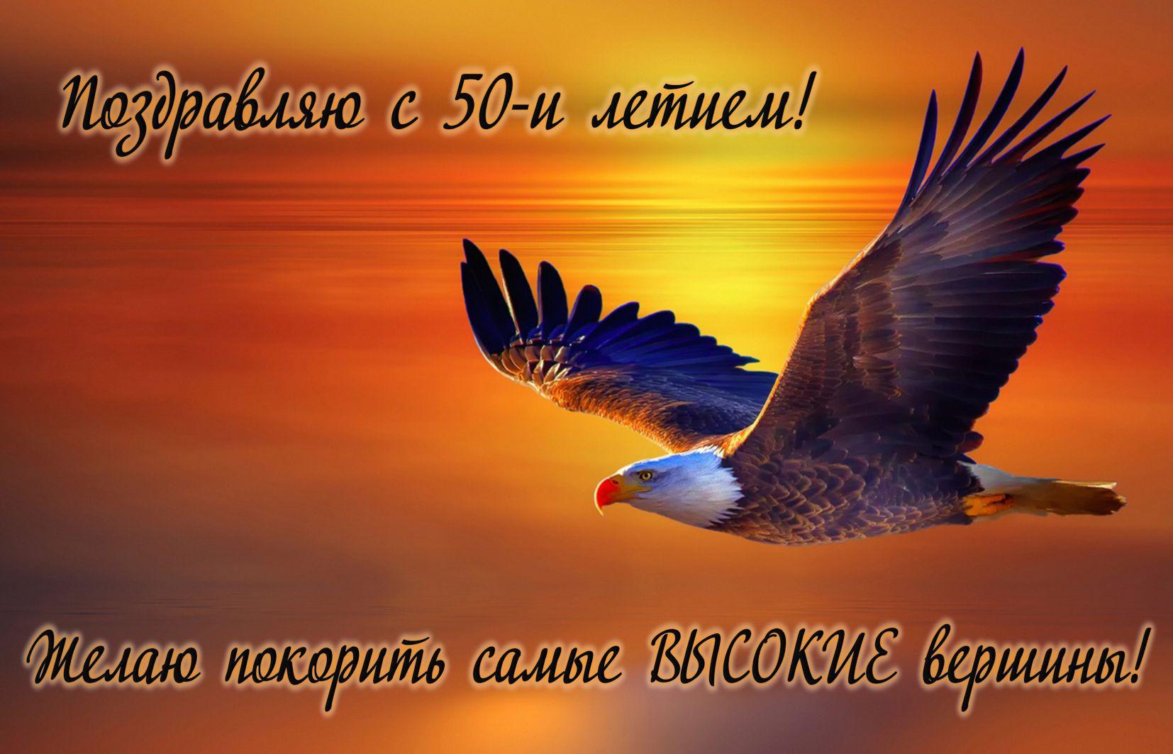 Открытка на юбилей 50 лет - парящий орел в золотом закатном небе
