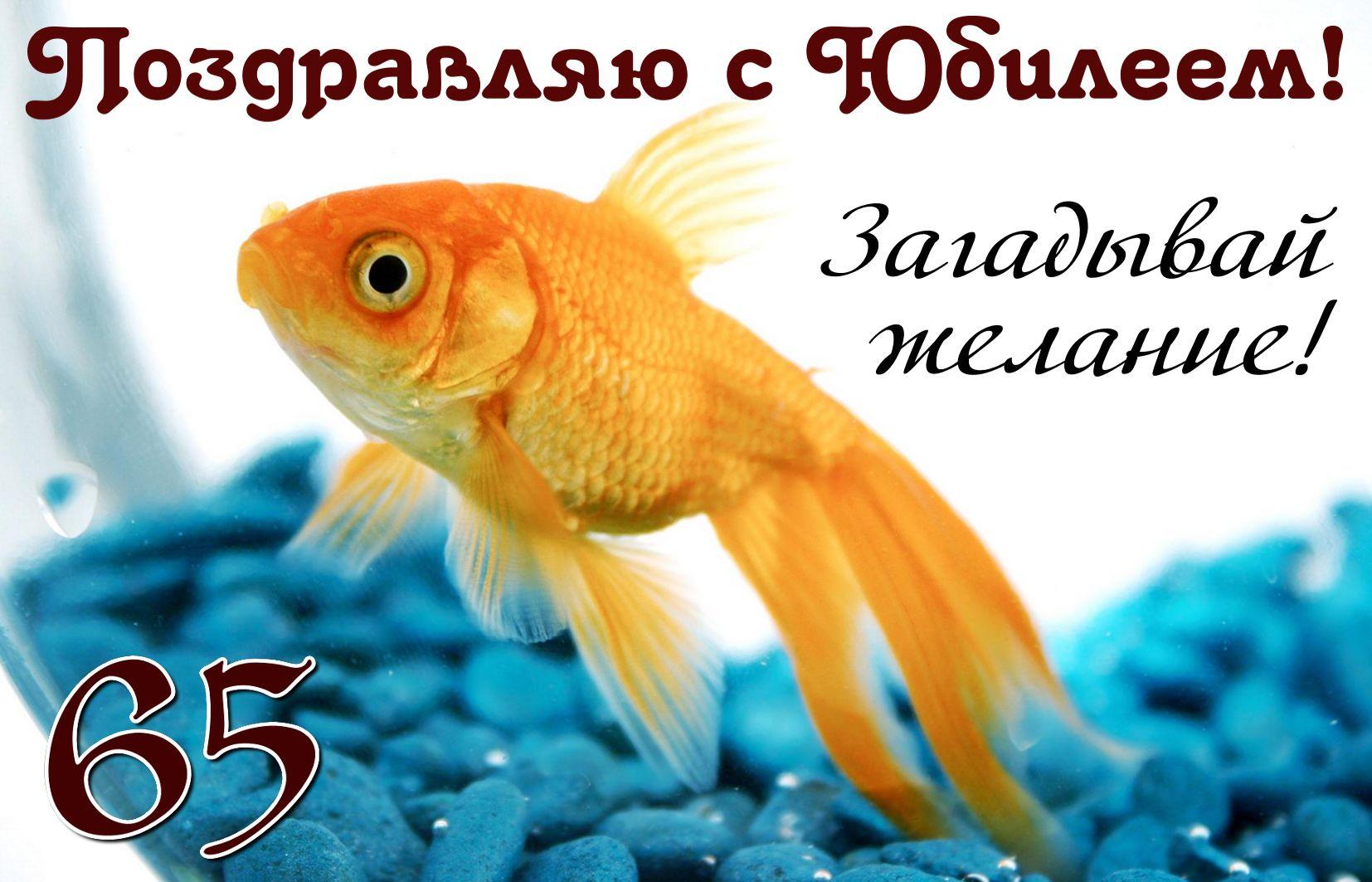 Открытка на юбилей 65 лет - золотая рыбка на фоне синих камешков