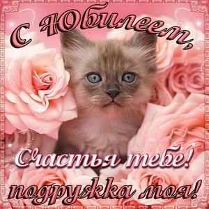 Открытка подруге на юбилей с котёнком среди роз