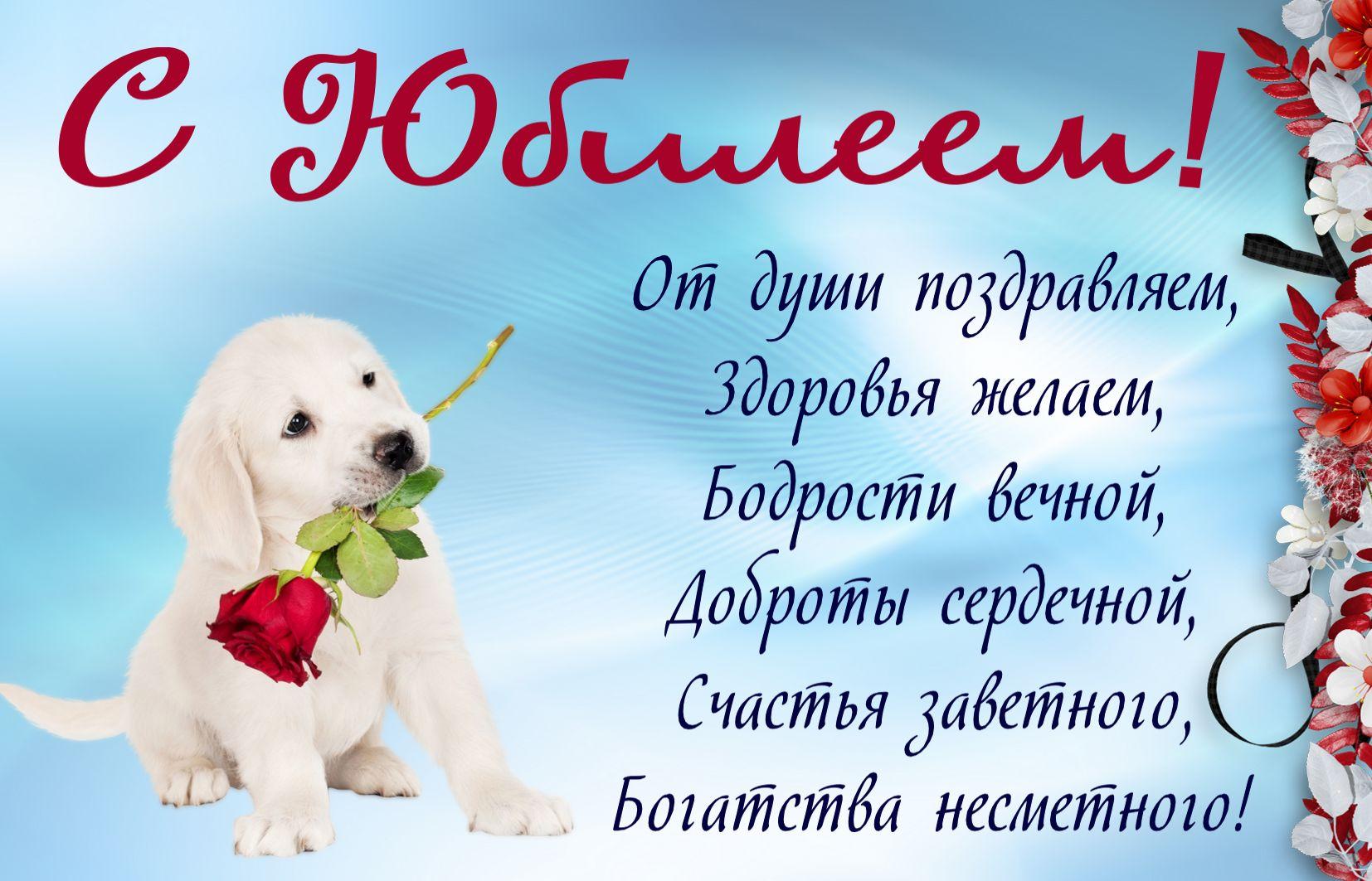 Открытка к юбилею - собачка с розой и пожелание