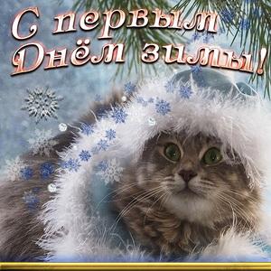 Картинка с котом на первый День зимы