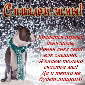 Открытка к началу зимы с милой собачкой