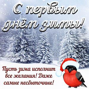 Открытка на первый день зимы с милой птичкой