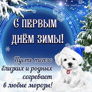 Добрая открытка на первый день зимы с собакой