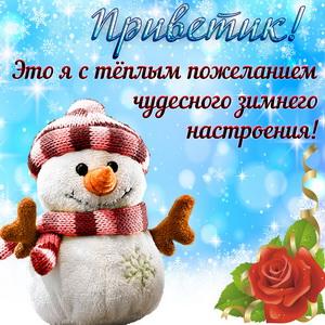 Снеговик желает чудесного настроения