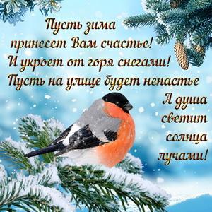 Открытка с красивым пожеланием на зиму