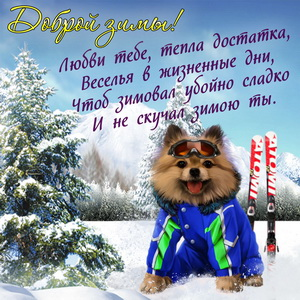 Смешная собачка желает доброй зимы
