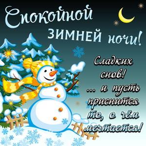 Снеговик желает спокойной зимней ночи