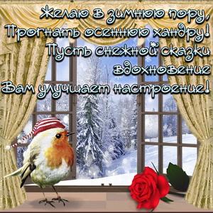 Картинка с птичкой и пожелание в зимнюю пору