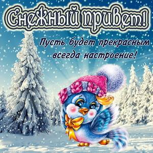 Птичка в шапочке передает снежный привет