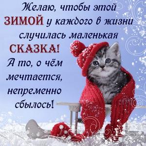 Картинка с милым котёнком в шарфике