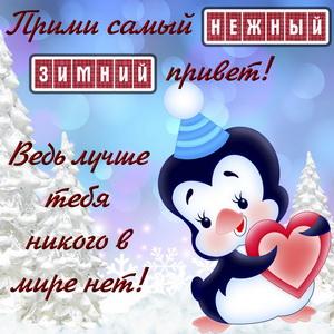 Картинка с зимним приветом от пингвинчика