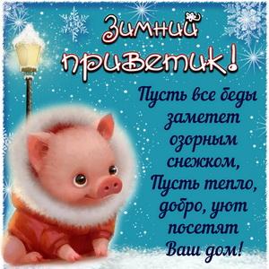 Картинка с зимним приветиком от свинки