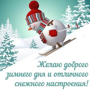 Снеговик на лыжах желает доброго зимнего дня