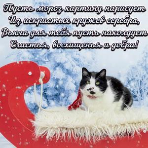 Добрый зимний стишок и котик на саночках