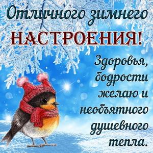 Птичка в шапочке желает отличного настроения