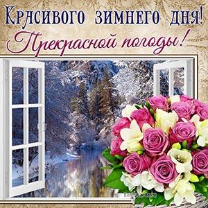 Красивого зимнего дня, прекрасной погоды с цветами