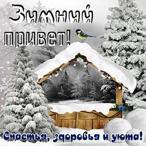 Зимний привет, желаю счастья, здоровья, уюта